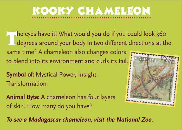 Chameleons Artful Animals