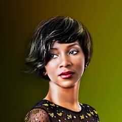 Iké Udé: Nollywood Portraits